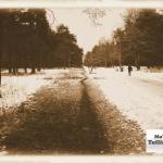 Tallinlaste küttearved väiksemaks – 6 sammu eesmärgini
